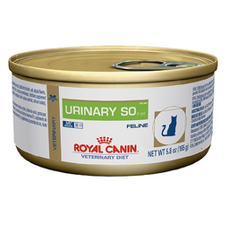 Royal Urinary Felino Lata