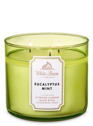 Vela Grande Eucalyptus Mint