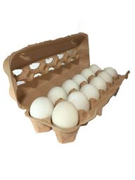 Huevos blancos 12 und