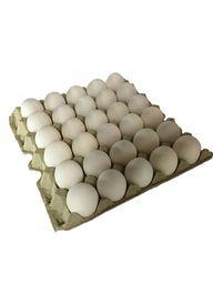 Bandeja de huevos blancos 30 und