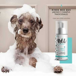 Petit (C) (F) Wash IT Shampoo (Syndet) 150mL