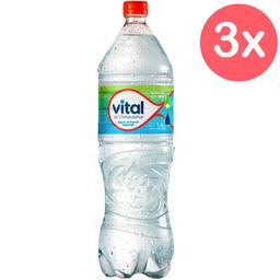 Vital Pet 1,6 L S/Gas