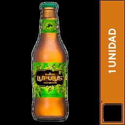 Kross Lupulus 330 ml