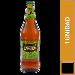 Kross Lupulus 710 ml