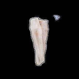 Merluza Austral