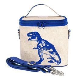 Cooler Bags Blue  Dinosaur
