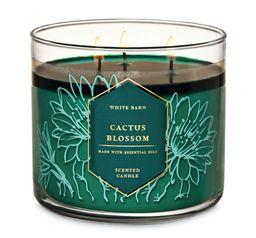 Cactus Blossom Vela Perfumada -