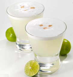 Pisco Sour Alto Del Carmen 40° 500ml