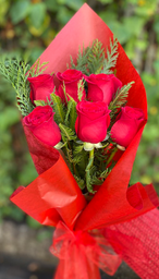 Simple amor rojo