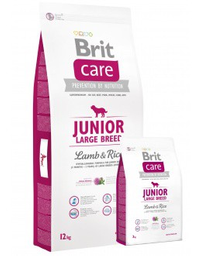 Junior large breed lamb & rice