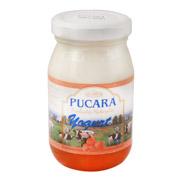 Yoghurt sabor damasco