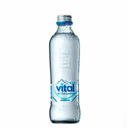 Vital Sin Gas 600 ml