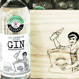 Gin Andes Destilería Quintal 750 ml