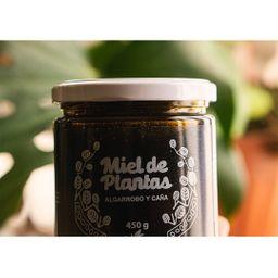 Miel de Plantas (nitay)