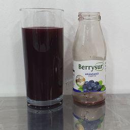 Jugo Arándano 250 ml
