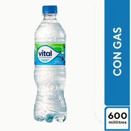 Vital con Gas 500 Ml.