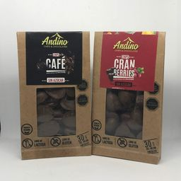 Chips Andino Chocolate
