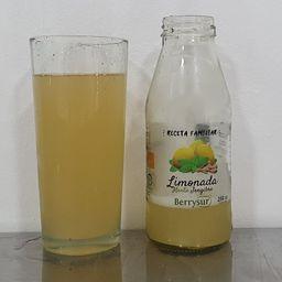 Limonada Menta Jengibre 250 ml
