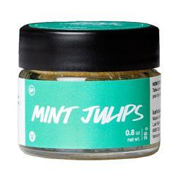 Mint Julips Lip Scrub | Exfoliantes de labios