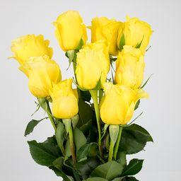 Rosas amarillas 10 un