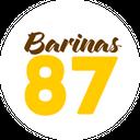 Barinas 87 background
