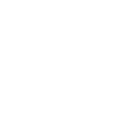 The Not Company