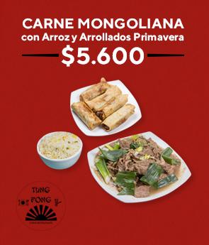 Carne mongoliana con arroz y arrollados primavera $ 5.600
